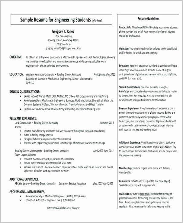 Sample Summary Statements Luxury Examples Resume Summary Section Resume Resume