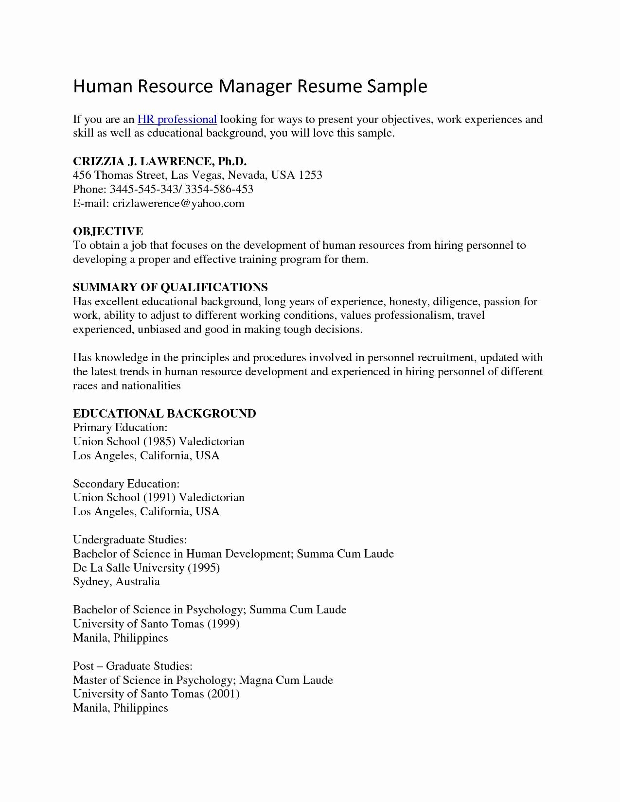 Sample Summary Statements Luxury Human Resources Resume Summary Statement Examples
