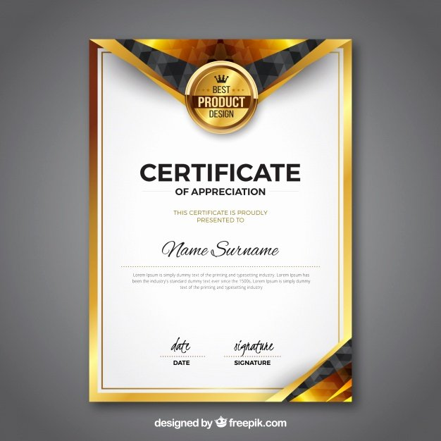 Scholarship Certificate Templates Free Unique Award Certificate Vectors S and Psd Files