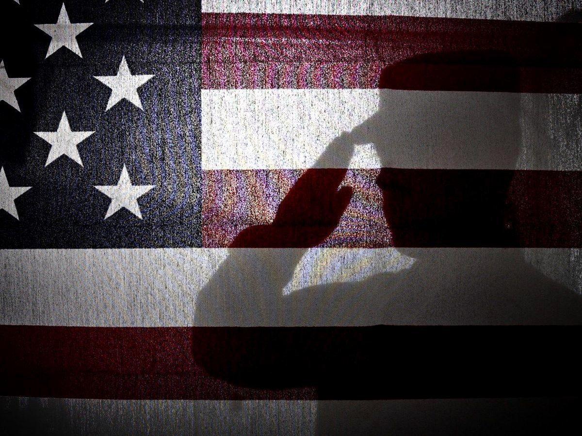 Senate Bill format Beautiful Veterans Will Sidestep License Fee In Latest Senate Bill