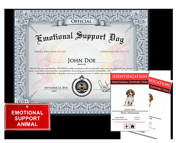 Service Dog Certificate Template Free Awesome Emotional Support Dog Basic Kit Us Dog Registry