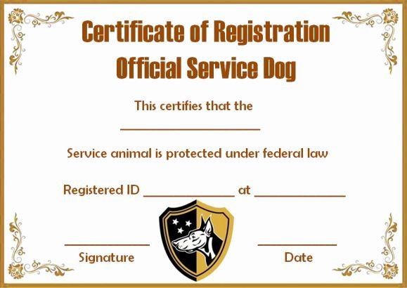 Service Dog Certificate Template Free Beautiful Service Dog Papers Template