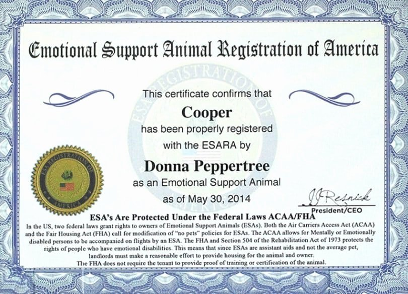 Service Dog Certificate Template Free Fresh Emotional Support Dog Laws Protecting Your Rights