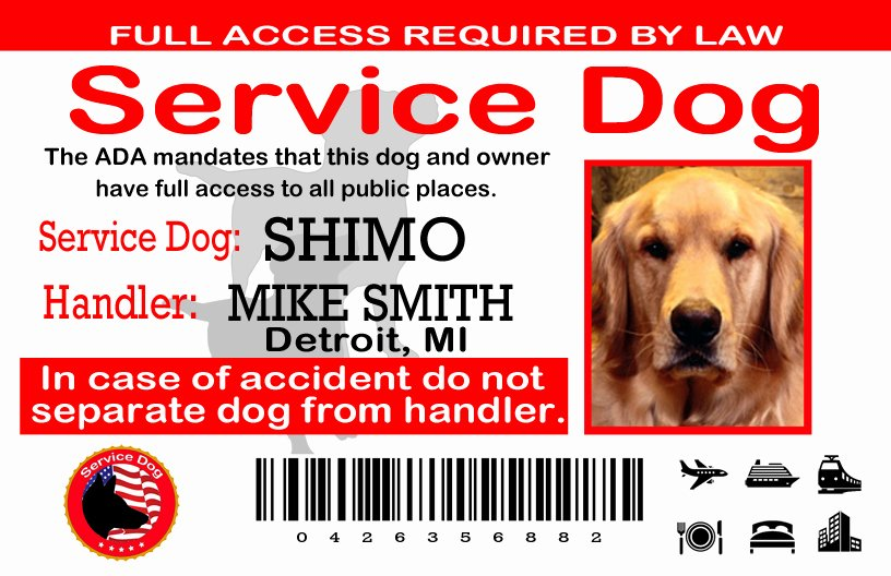 Service Dog Certificate Template Free New Home [ ]