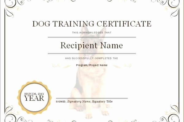 Service Dog Training Certificate Template Best Of Microsoft Word & Excel Templates Part 6