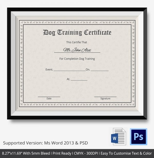 Service Dog Training Certificate Template New Training Certificate Template 21 Free Word Pdf Psd