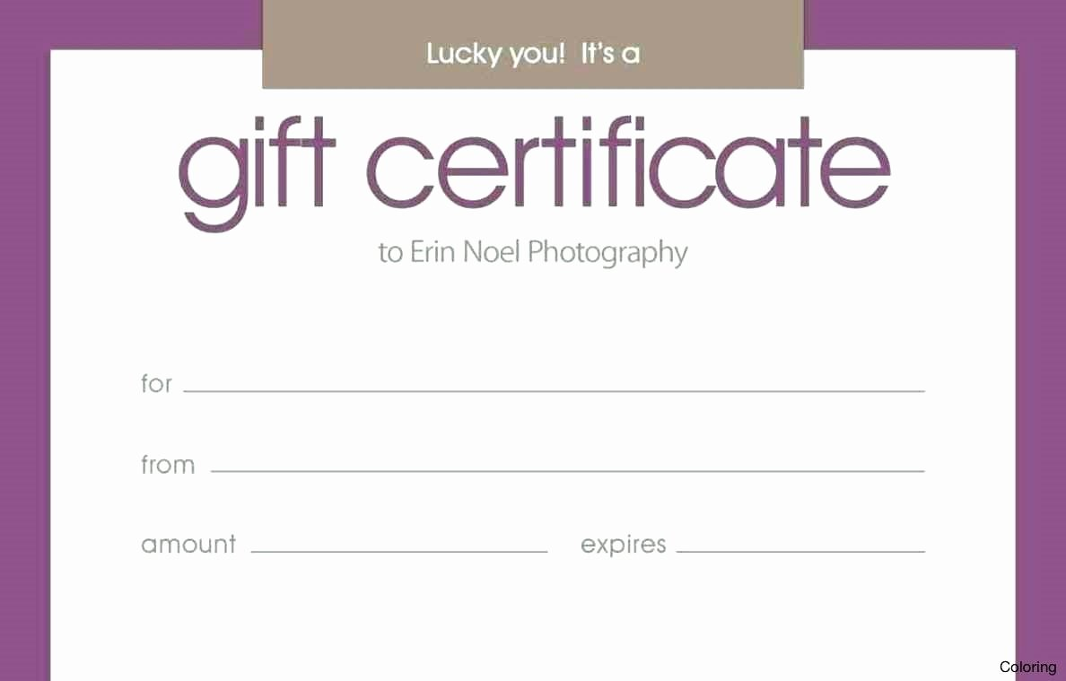 Silent Auction Gift Certificate Template Awesome Silent Auction Certificate Template Bizoptimizer