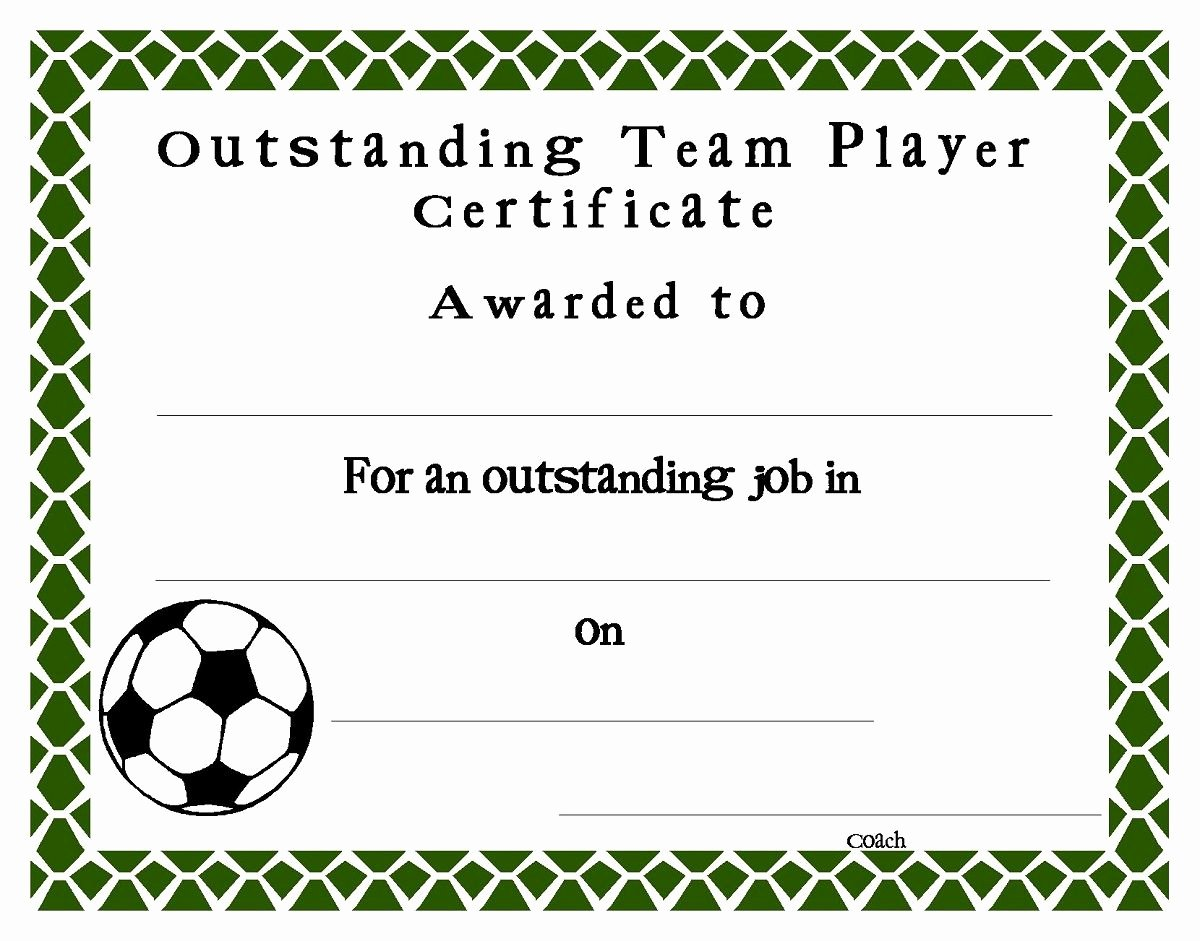 Soccer Award Certificate Templates Best Of soccer Award Certificate Template Professional Template