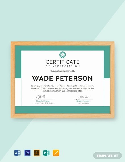 Soccer Certificate Word Template Awesome 24 Free Award Certificate Templates Word