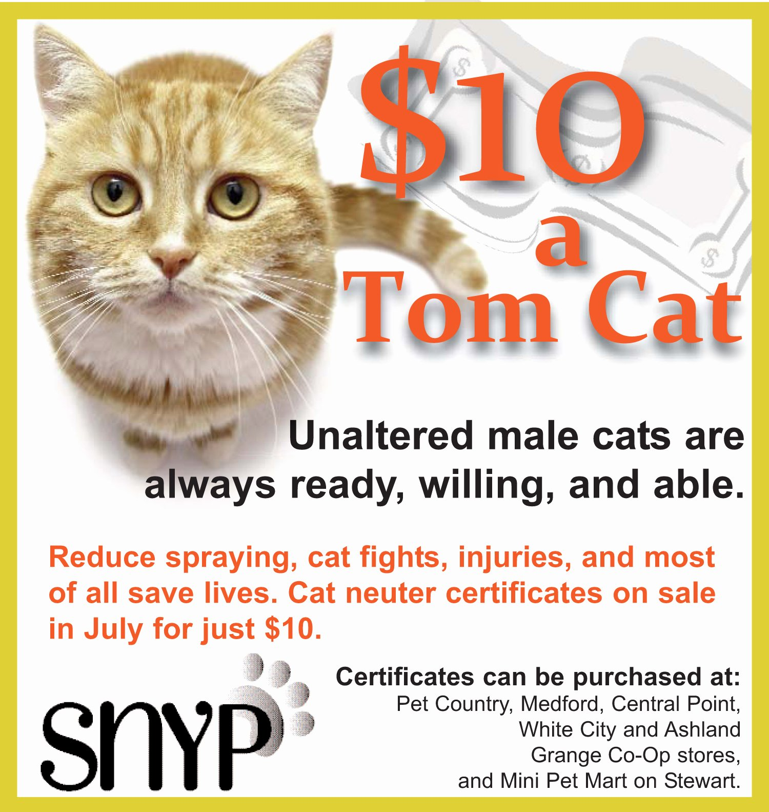 Spay Neuter Certificate Template Luxury $10 A tom Cat Neuter Certificates Available In July Spay