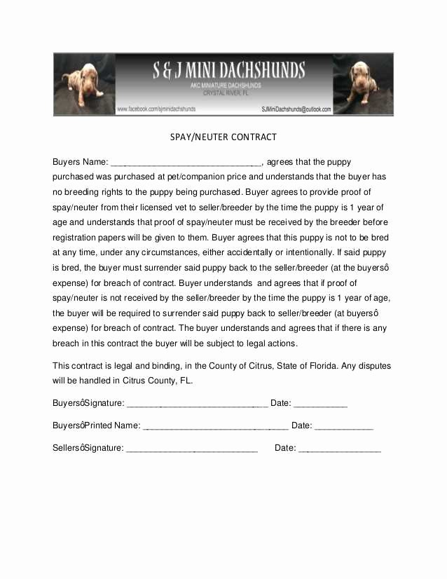 Spay Neuter Contract form Elegant 50 Useful Spay Neuter Agreement Contract Yu N