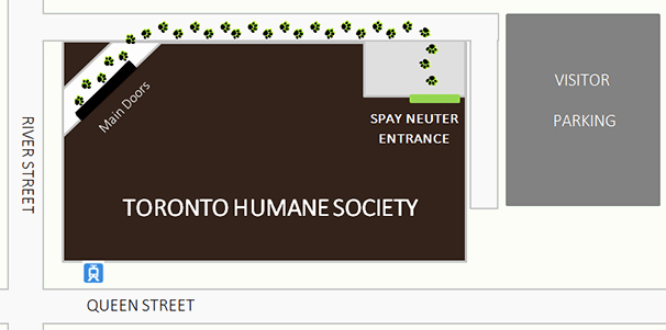 Spay Neuter Contract form Luxury Our Spay Neuter Clinic
