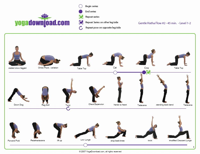 Stretching Charts Free Printable Beautiful 1000 Images About Yoga Class On Pinterest