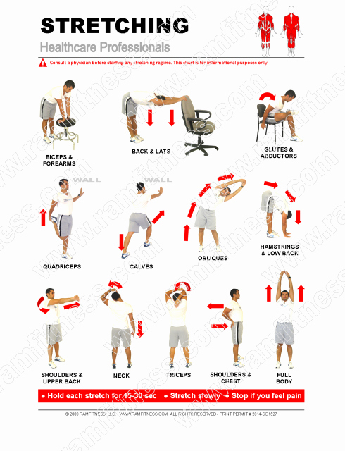 Stretching Charts Free Printable Beautiful 12 Healthcare Professional Stretches Pdf File Plus
