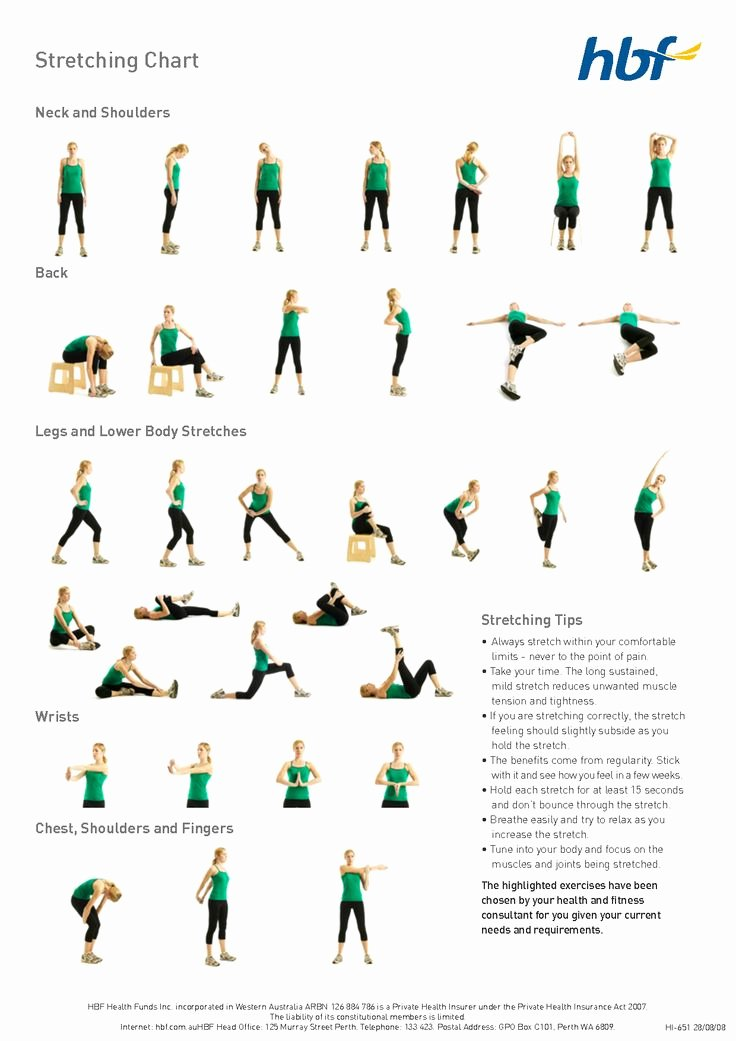 Stretching Charts Free Printable Luxury Basic Stretches Diagram Workout Tip 2