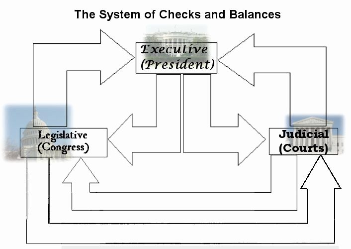 Student Congress Bill Template Lovely Flow Chart Checks and Balances Government