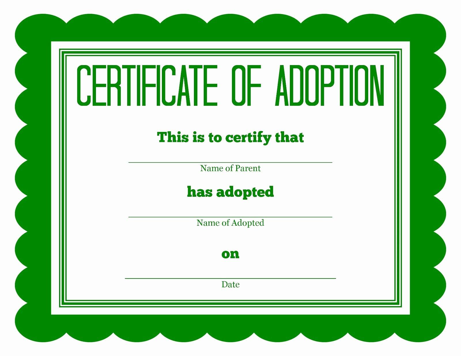 Stuffed Animal Adoption Certificate Template Fresh More Stuffed Animal Adoption Certificates