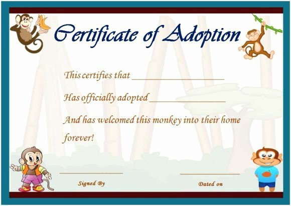 Stuffed Animal Adoption Certificate Template Unique Best 25 Free Certificate Templates Ideas On Pinterest