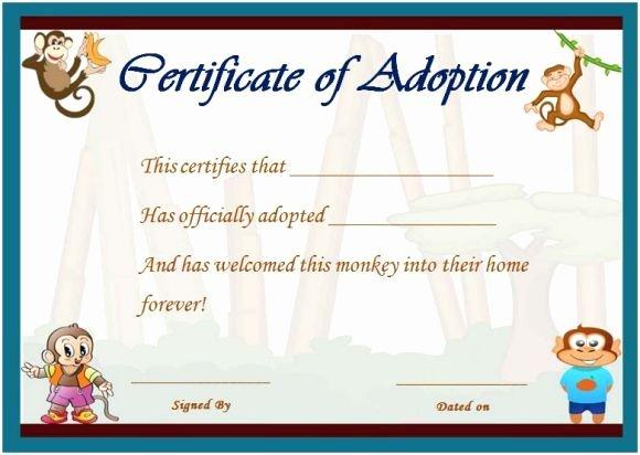 Stuffed Animal Adoption Certificate Template Unique Best 25 Free Certificate Templates Ideas On Pinterest