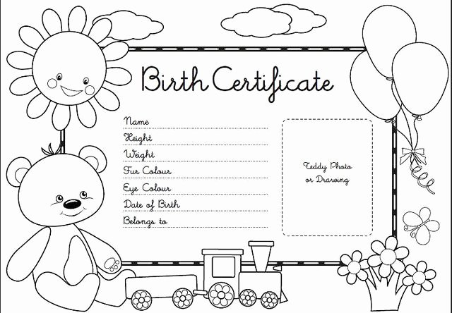 Stuffed Animal Birth Certificate Template Inspirational Birth Certificate Coloring Pages
