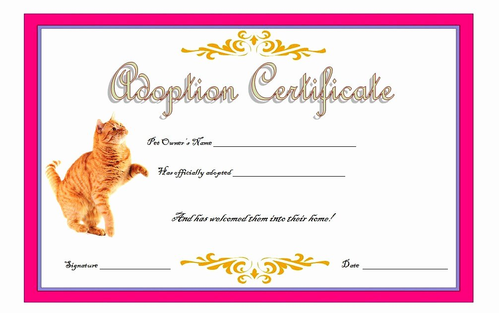 Stuffed Animal Birth Certificate Template New Cat Adoption Certificate Templates Free [9 Update Designs