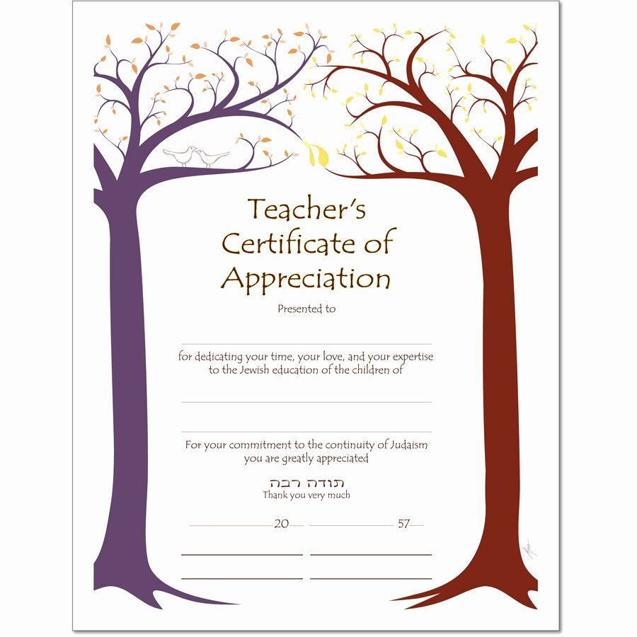 Sunday School Teacher Appreciation Certificates Beautiful Sample Certificate Of Appreciation for Teachers