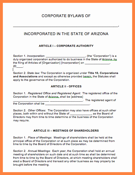 Texas bylaws Template Inspirational 9 Pany bylaws Template