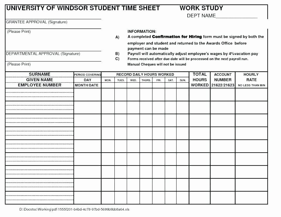 Time In Motion Study Template Best Of Time Study Template