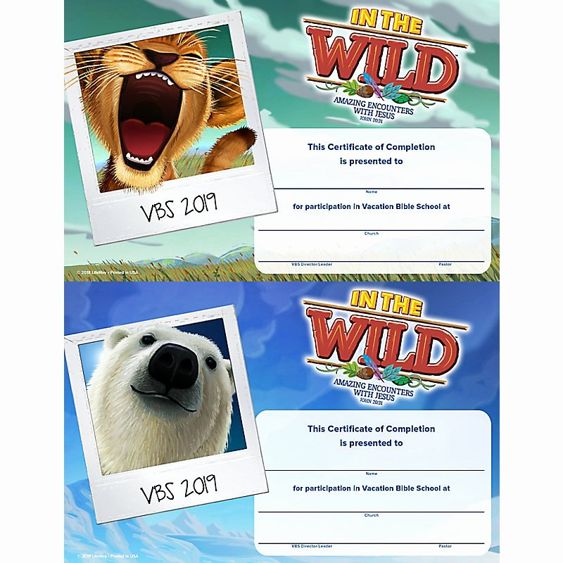 Vacation Bible School Certificate Templates Elegant Vbs 2019 Certificates Pletion 50 Certificates Lifeway