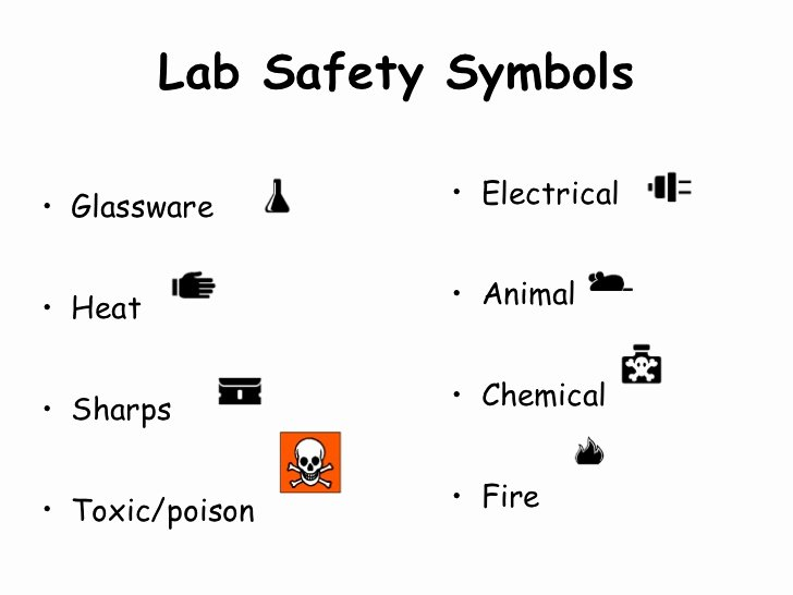 Worksheet Lab Safety Symbols Awesome Biology Lab Safety